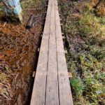 wooden-foot-bridge-at-hocking-hills-ohio