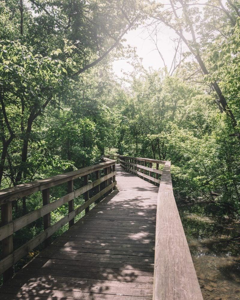 Wooden Walkway To Hayden Run Falls
