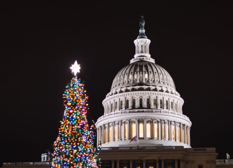 Capitol Chistmas Tree