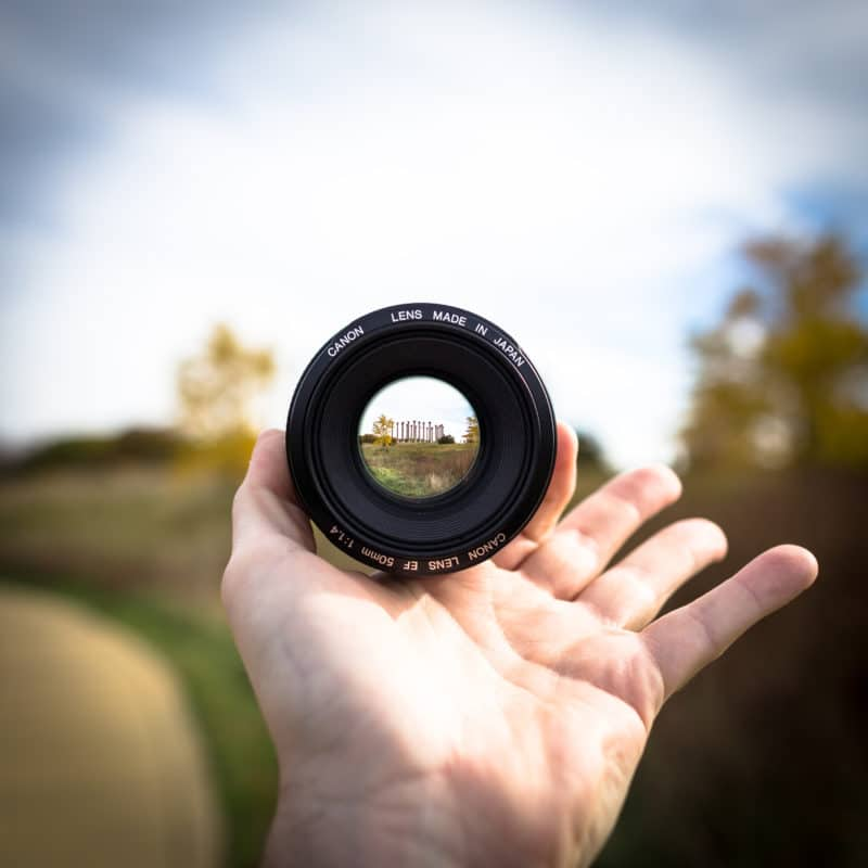 Arboretum-Through-Lens