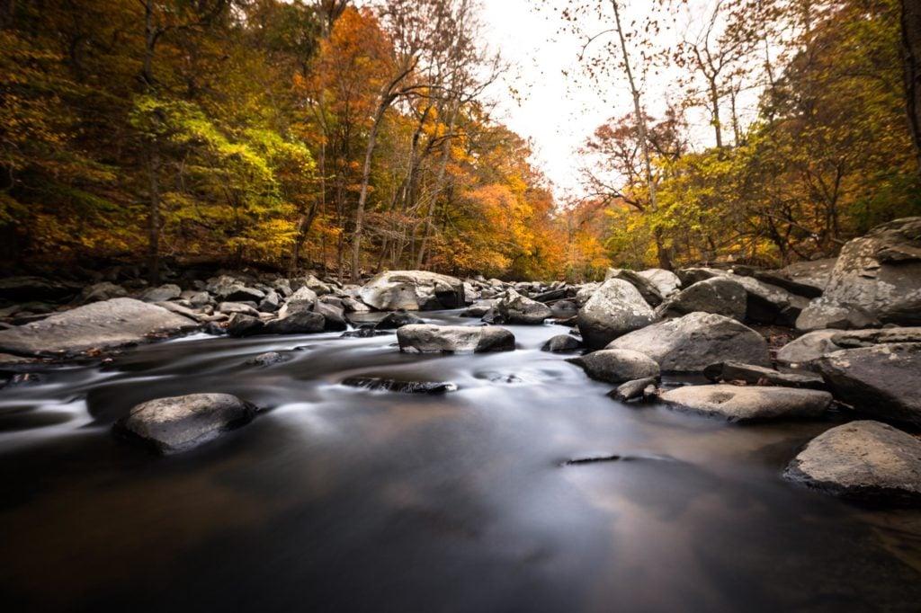 Rock Creek Park Fall