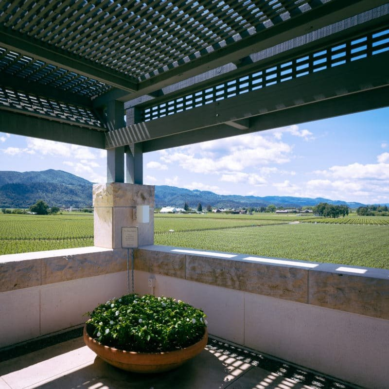 Opus One Winery Fields