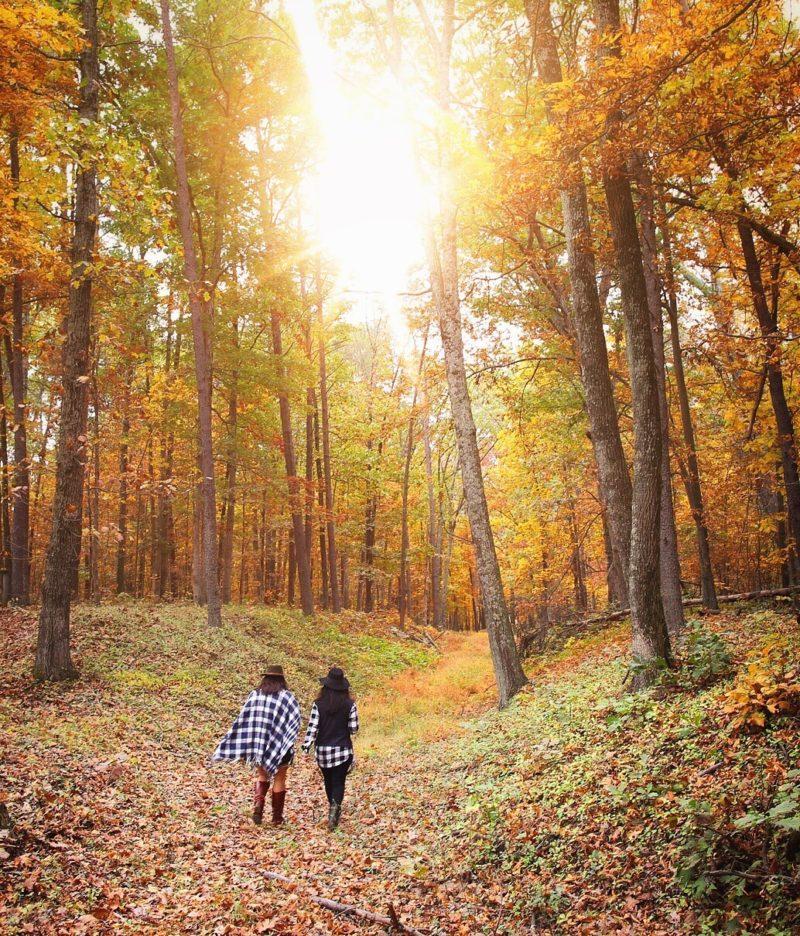 Fall Colors Manassas Battlefield