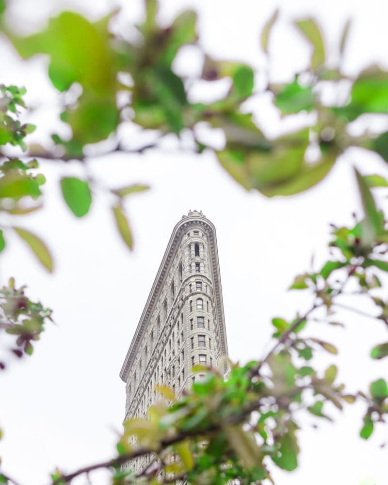 Flatiron Building Surrounded by Green