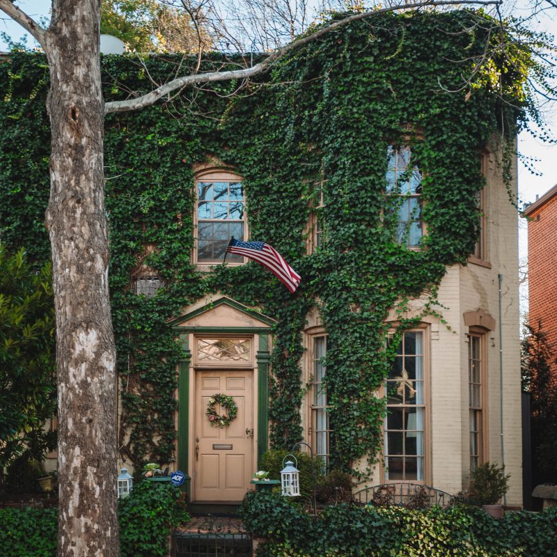 DC Georgetown Row House Ivy Covered
