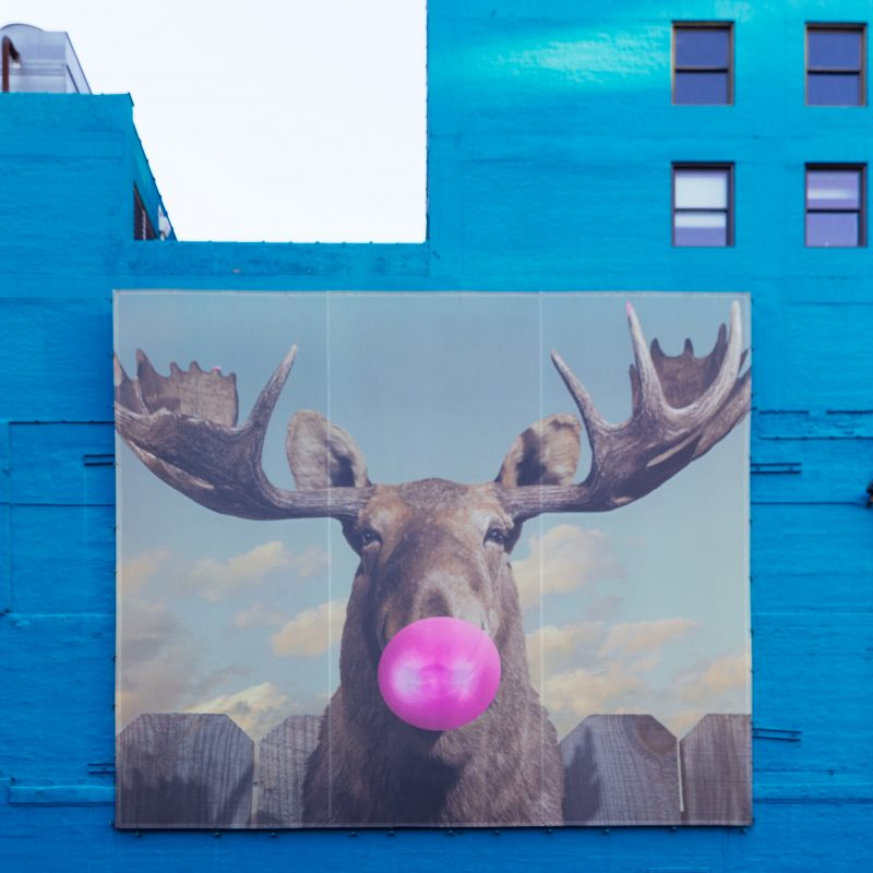 Moose at Wabash Arts Corridor