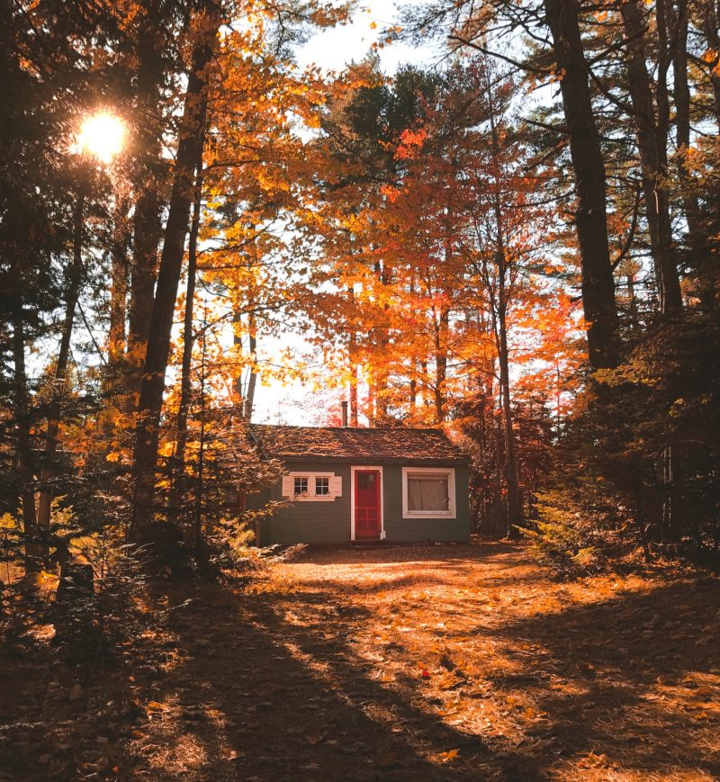 Cabin in Maine (AirBnB)