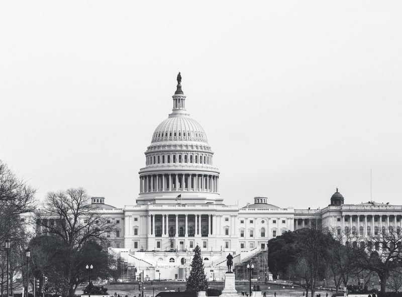 Us Capitol Black And White