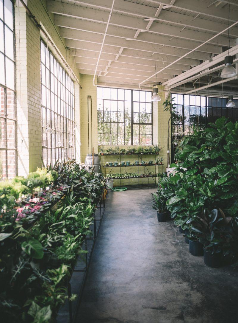 Bowood Farms St Louis