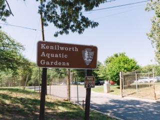 Kenilworth Aquatic Gardens Sign