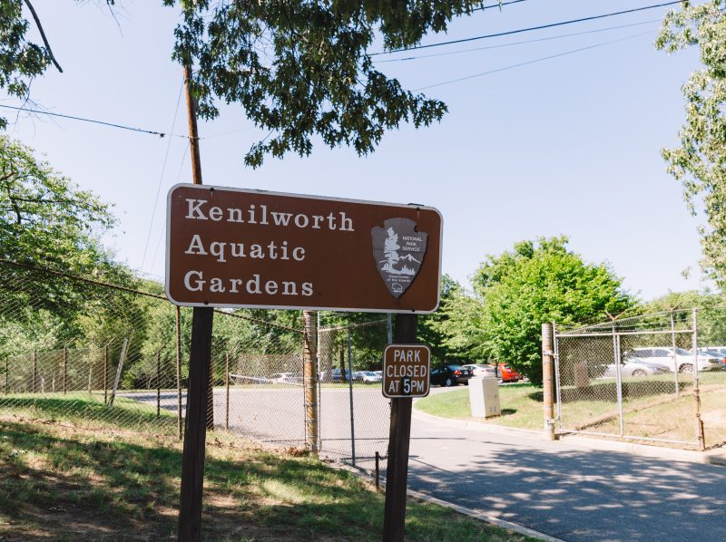 Kenilworth Aquatic Gardens Sign