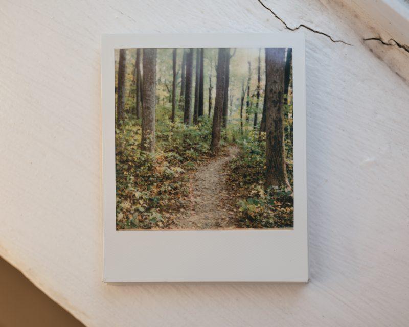 Polaroid Onestep2 Print