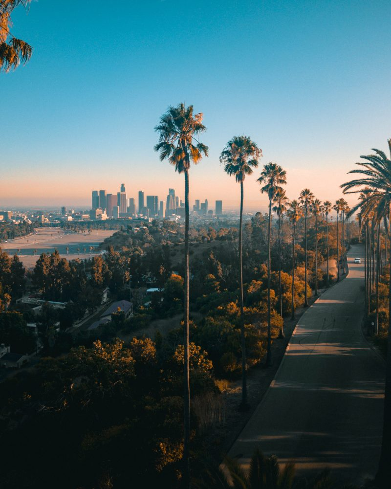 Elysian Park Los Angeles Sunset Dji Mavic Pro
