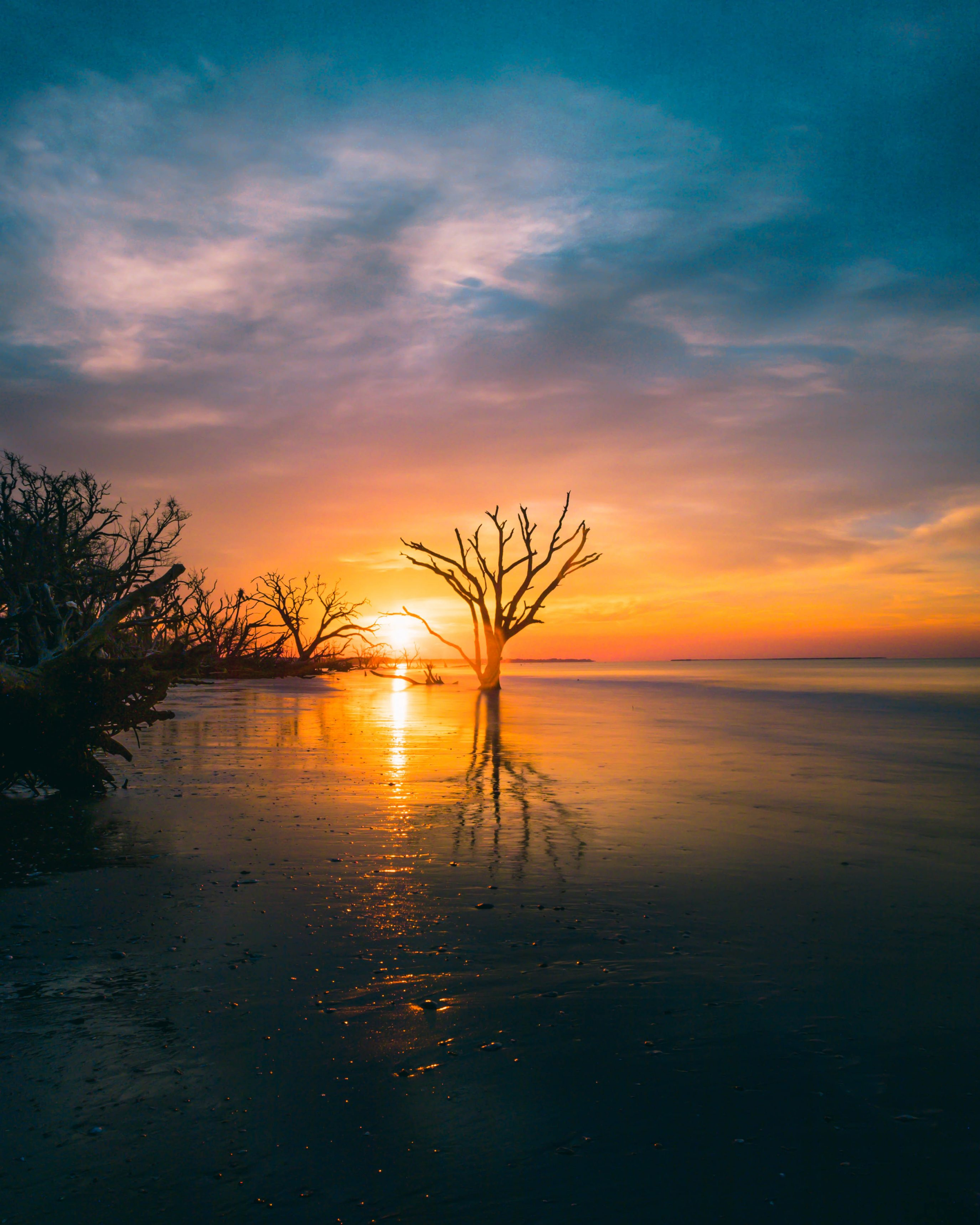 Botany Bay Beach Sunrise 16