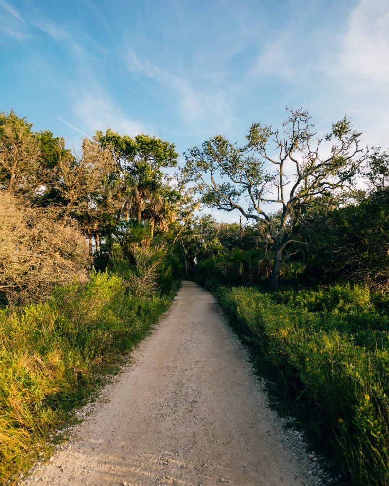 Trail To Botany Bay Beach